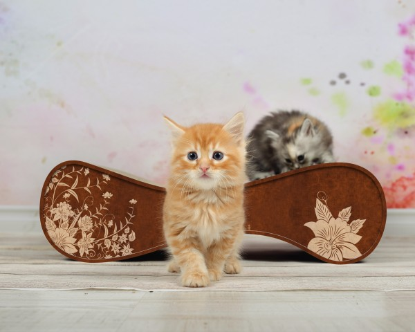 cat-on Kratzmöbel Le Ver M